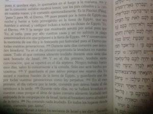 Exodo 12.11