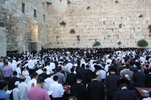 Jerusalem, mur de les lamentacions (12)
